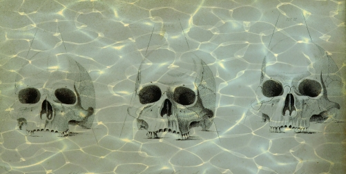 water skulls graphic