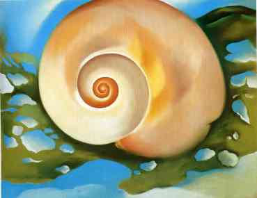 pink shell with seaweed 1937 georgia o'keeffe